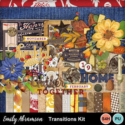 Transitions_kit_prev