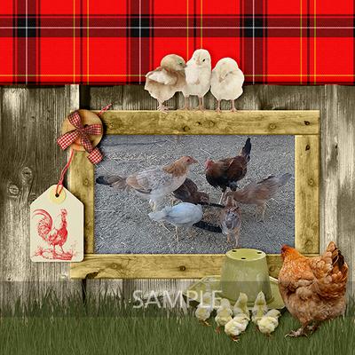 Chickenoregg_lo1sample