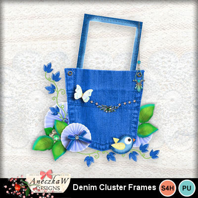 Cluster_denim_frame