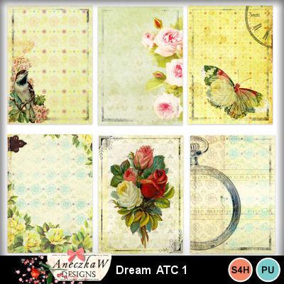 Dream_atc1