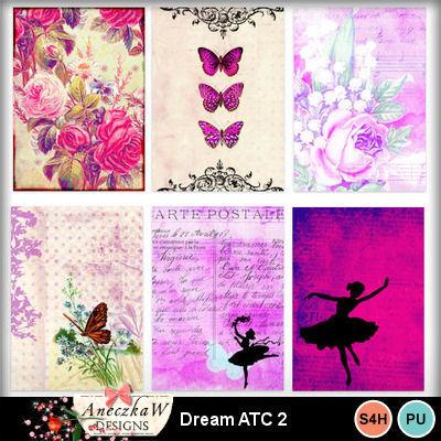 Dream_atc2