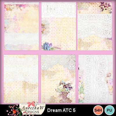 Dream_atc5