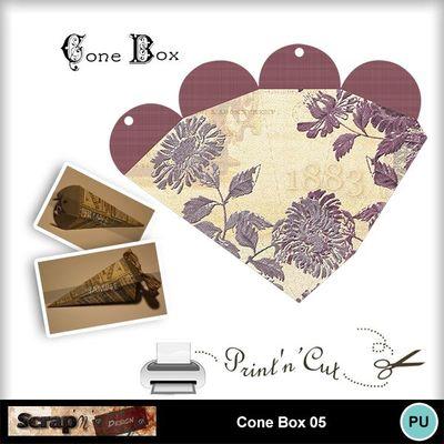 Cone_box_05