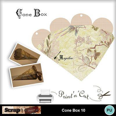 Cone_box_10