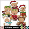 12_bears_of_christmas_01_preview_small