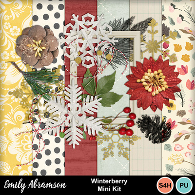 Winterberry_prev
