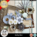 Softly_mini-all_small