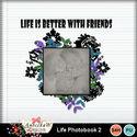 Life_photobook_2_12x12-001_small