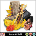Autumn_mix_up_05_preview_small