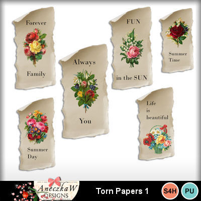 Torn_papers1