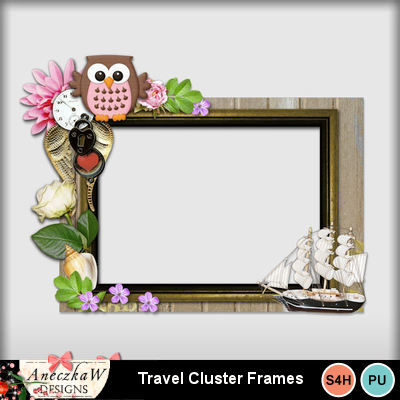 Travel_cluster_frame