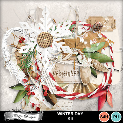 Florju_pv_winterday_kit