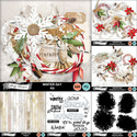 Florju_pv_winterday_bundle_small