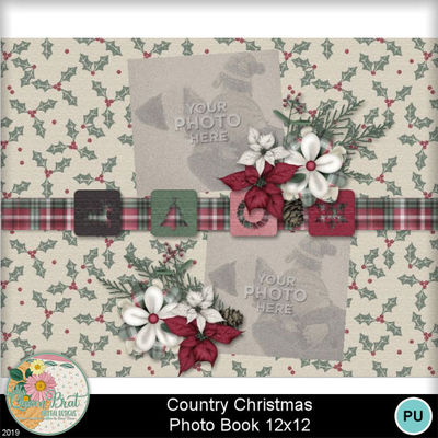 Countrychristmas11x8_019