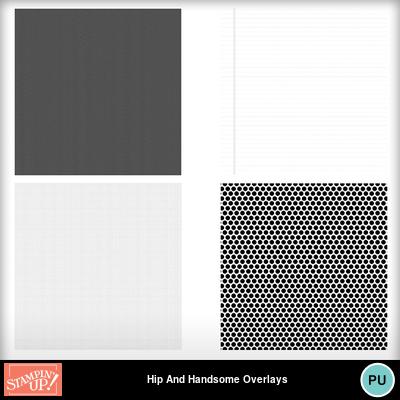 Hip_and_handsome_overlays_stamp_brush_set