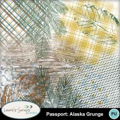 Mm_ls_passportalaskagrunge