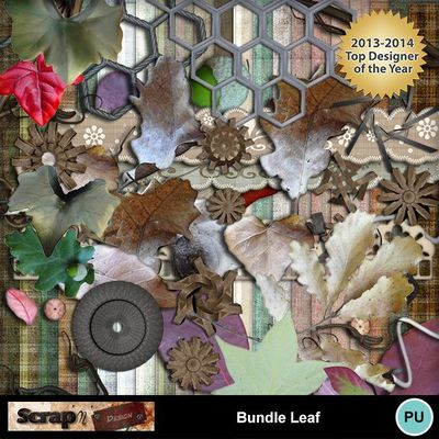 Bundle_leaf