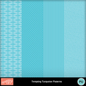 Tempting_turquoise_patterns_dsp_small