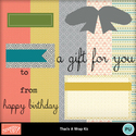 That_s_a_wrap_kit-001_small