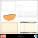 What_goes_in_designer_template_small