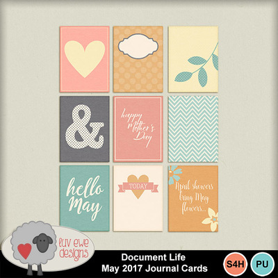 Documentlifemay2017cards