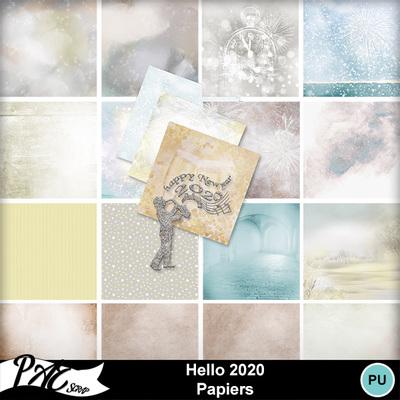 Patsscrap_hello_2020_pv_papiers