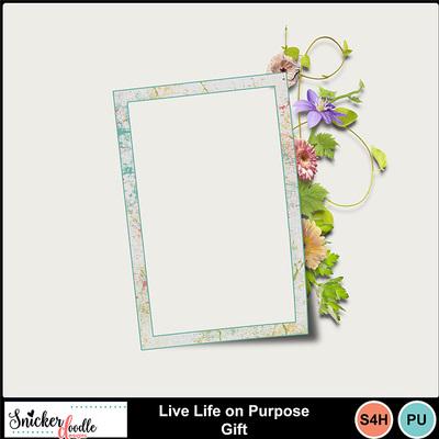 Live_life_on_purpose_gift-1