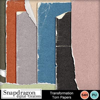 Sdc_transformtorn