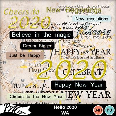 Patsscrap_hello_2020_pv_wa