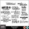 Aimeeh_wintersolstice_wa_small