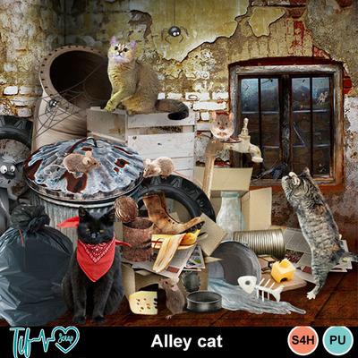 Folder_alleycat