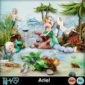 Folder_ariel_small