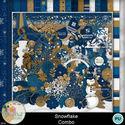 Snowflake_combo1-1_small
