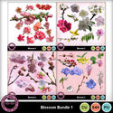 Blossomcubundle1_small