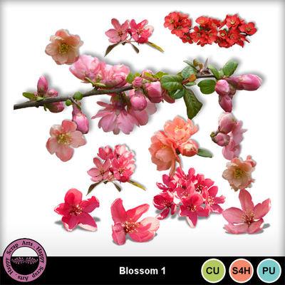 Blossomcu1