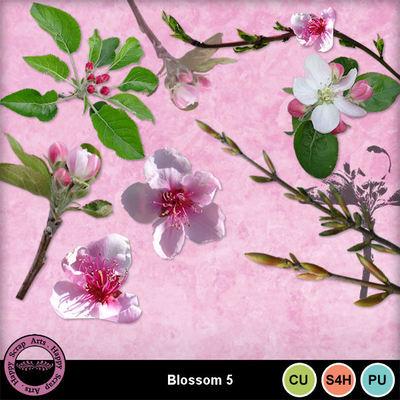 Blossomcu5