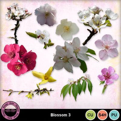 Blossomcu3