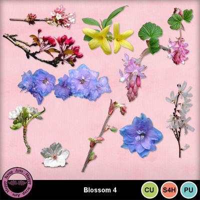 Blossomcu4