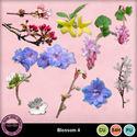 Blossomcu4_small