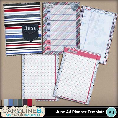 June-a4-planner_1