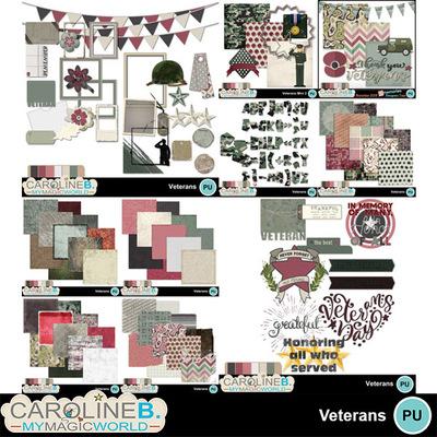 Veterans_bndl_1