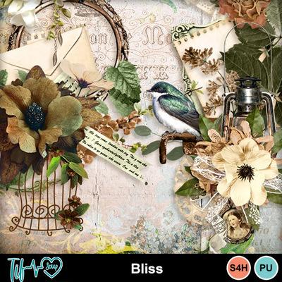 Folder_bliss