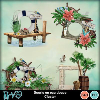 Folder_souriseneaudouce_cluster