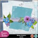Winter_solstice_mini_small