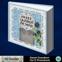 Sweet_grandson12x12_book-001a_small