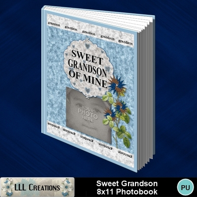 Sweet_grandson_8x11_book-001a