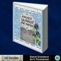 Sweet_grandson_8x11_book-001a_small