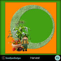 Harvest_small
