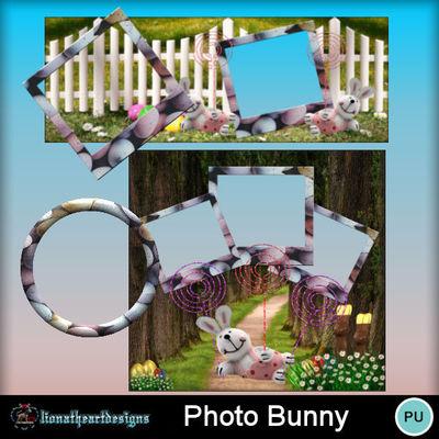 Photo_bunny-fb-qp
