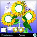 Sunny_small